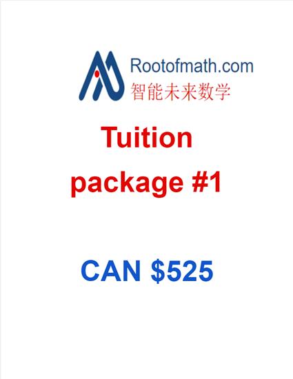图片 Rootofmath Math Tuition Package 1