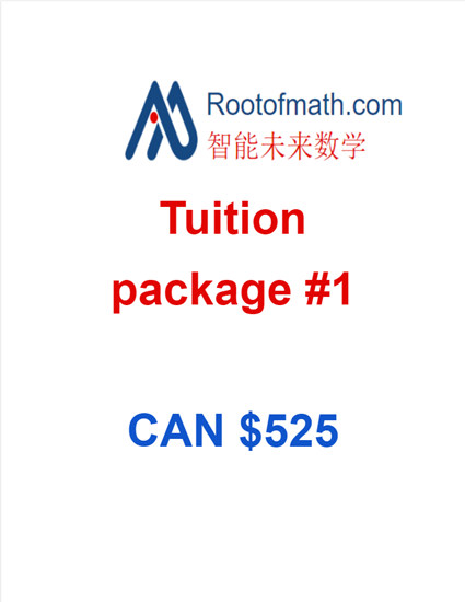 Picture of Rootofmath Coding Tuition Package 1